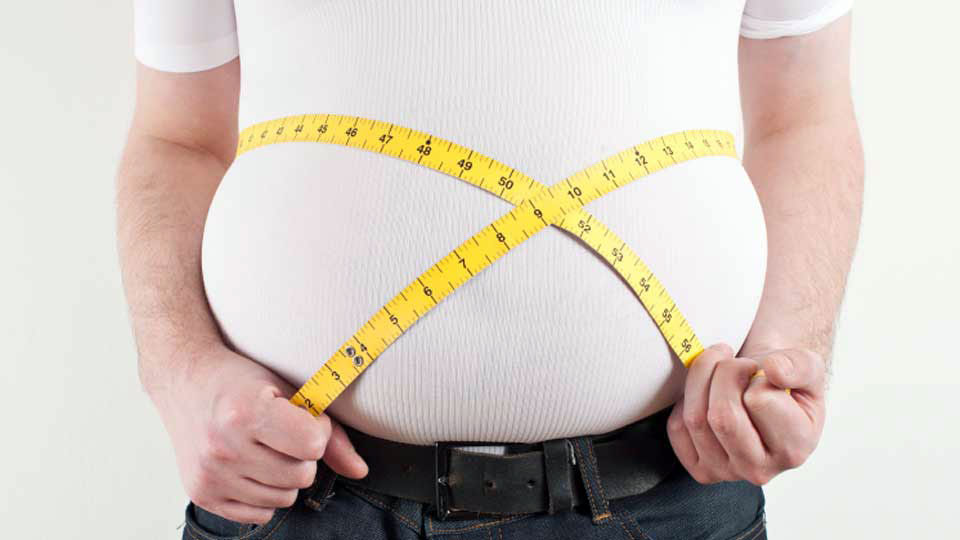 obezite ve elme tipi şişmanlık