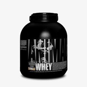 universal animal whey protein tozu